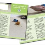 Safe Way to Care Leaflet