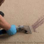 IICRC Carpet Cleaning Technicians Course (CCT)