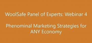 WoolSafe Panel of Experts: Webinar 4 – Phenominal Marketing Strategies for ANY Economy